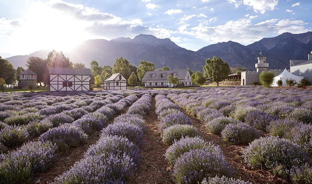 Young Living Whispering Springs Farm