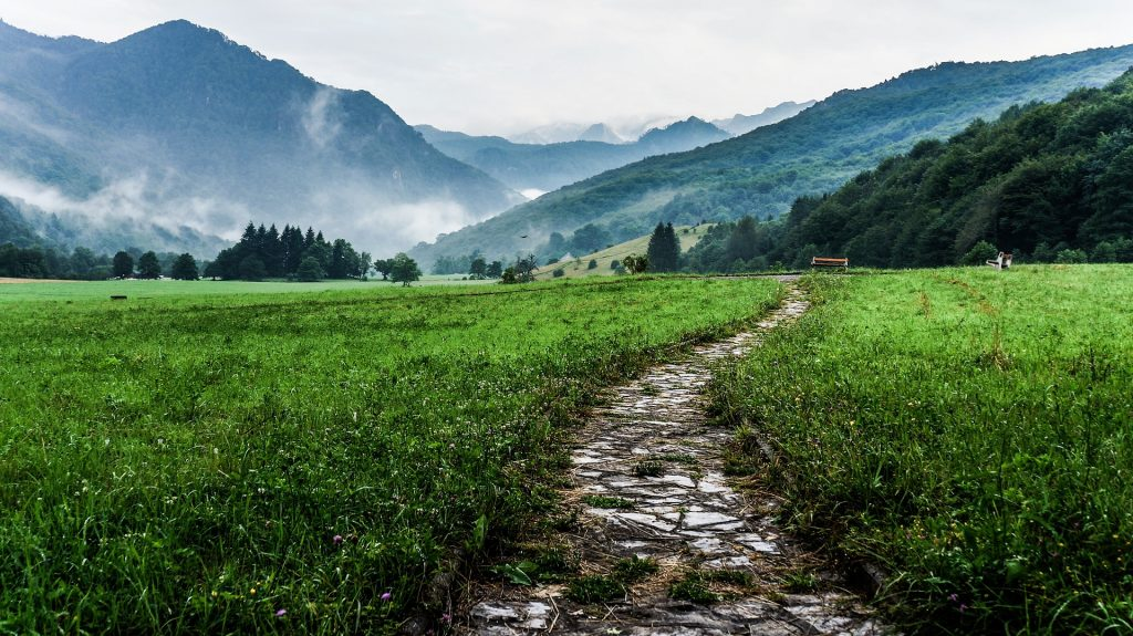 A path through a mountain meadow, leading off into the distance