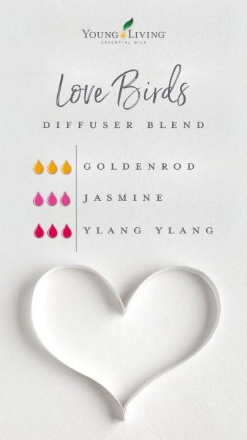 Love birds diffuser blend, goldenrod, jasmine and ylang ylang