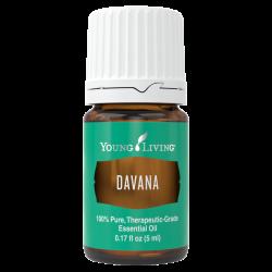 Davana essential oil