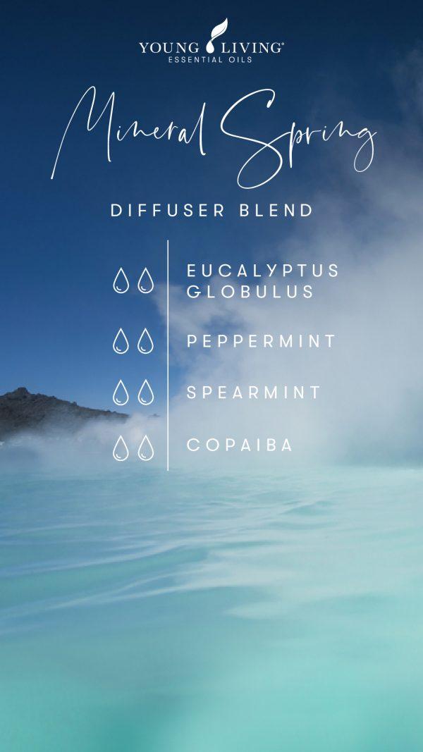 2 drops Eucalyptus Globulus 2 drops Peppermint 2 drops Spearmint 2 drops Copaiba