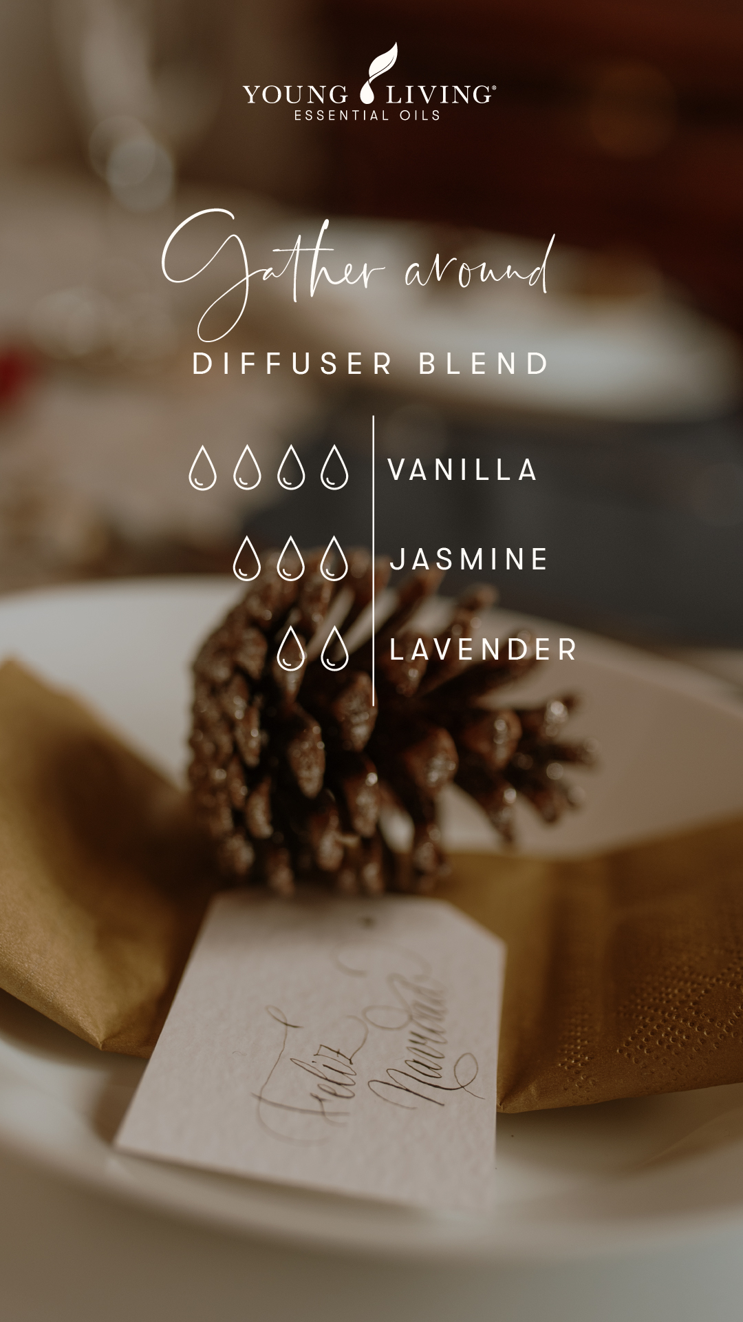 Young Living Holiday Diffuser Blend - Gather Round