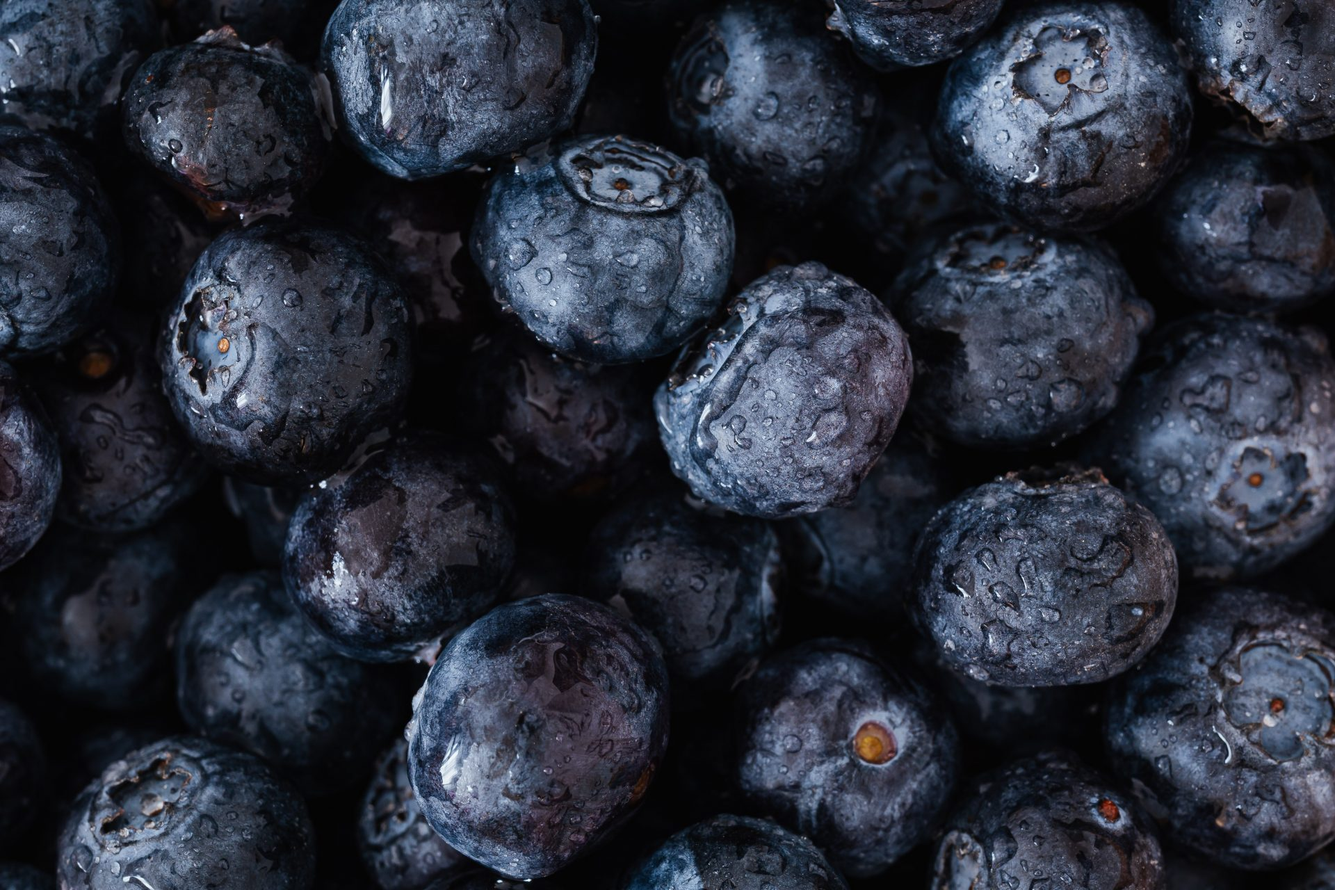 Blueberries - Young Living Lavender Life Blog